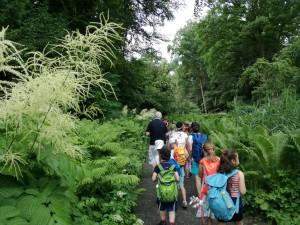 Eine Gruppe Kinder läuft zwischen großen grünen Pflanzen und Bäumen hindurch.
