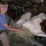 Bauernhofcamp, Kindercamp, Kinderfreizeit, Ferienfreizei