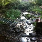 Ein kleiner Bach im Wald. Über den Bach wurde eine selbstgebastelte Hängebrücke aus Seilen und Stöcken gespannt.