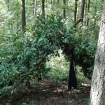 Ein selbstgebauter Unterschlupf im Wald. Mit Ästen und Schnüren wurde eine Dachform gebaut und dann mit Blättern abgedeckt, um es wetterfester zu machen.