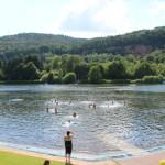 Panoramaufnahme eines Badesees mit schwimmenden Kindern.