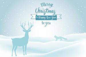 merry-christmas-1858093_1920